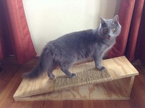 How to make a cat scratching board .  Free tutorial with pictures on how to make a scratching post in 3 steps using ruler, sand paper, and hammer. How To posted by FluffyKittyYoda.  in the Home + DIY section Difficulty: Simple. Cost: Cheap.