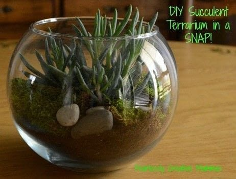 DIY Succulent Terrarium .  Free tutorial with pictures on how to make a terrarium in under 30 minutes by gardening with soil, moss, and glass container. How To posted by Kathleen C.  in the Home + DIY section Difficulty: Easy. Cost: Cheap. Steps: 4