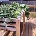 Easy How To Build A Counter Height Garden Planter