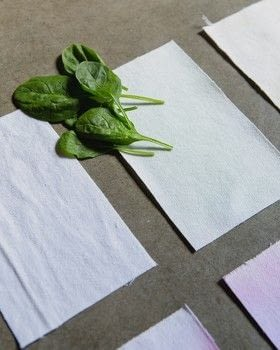 Paint, Print & Ink .  Free tutorial with pictures on how to dye with berries in under 45 minutes by dyeing with cotton twill, veggies, and white vinegar. How To posted by Taunton Books.  in the Other section Difficulty: Simple. Cost: Cheap. Steps: 7