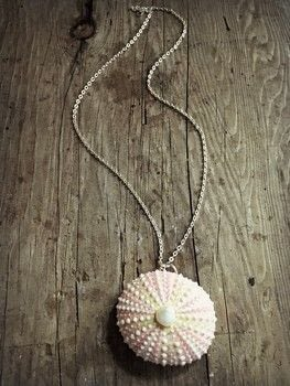Sea Urchin Necklace 183 How To Make A Shell Necklace 183 Jewelry On Cut Out Keep