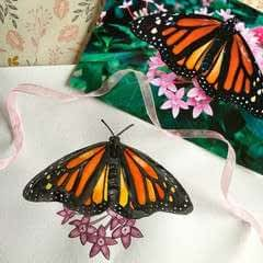 How To Draw And Paint A Butterfly Step By Step