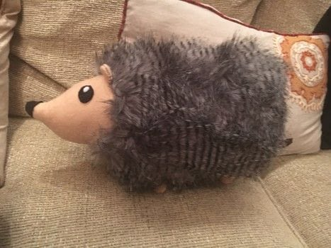 .  Make an animal plushie Inspired by animals, rodents, and hedgehogs. Version posted by Araxie D. Difficulty: Simple. Cost: 3/5.