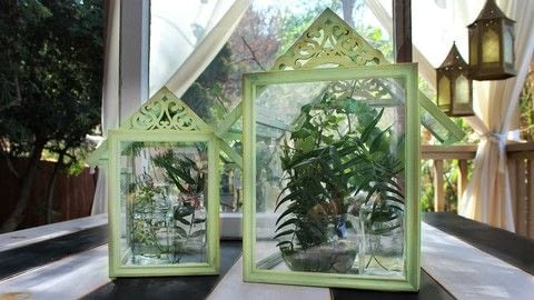 .  Free tutorial with pictures on how to make a terrarium in under 60 minutes by spraypainting, decorating, glassworking, and woodworking with e-6000 glue, americana decor chalky finish paint, and frames. How To posted by Mark Montano.  in the Home + DIY section Difficulty: Easy. Cost: Cheap. Steps: 4
