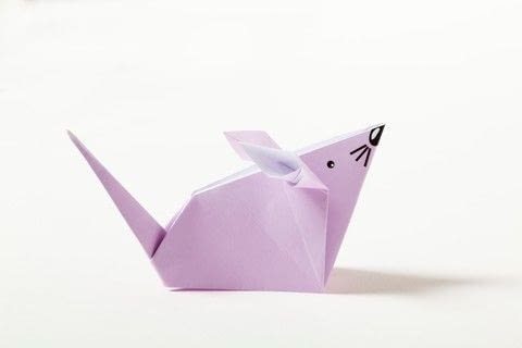 Origami Animal Friends .  Free tutorial with pictures on how to fold an origami animal in under 15 minutes by paper folding with paper. Inspired by mice. How To posted by Ryland Peters & Small.  in the Papercraft section Difficulty: 3/5. Cost: Absolutley free. Steps: 18