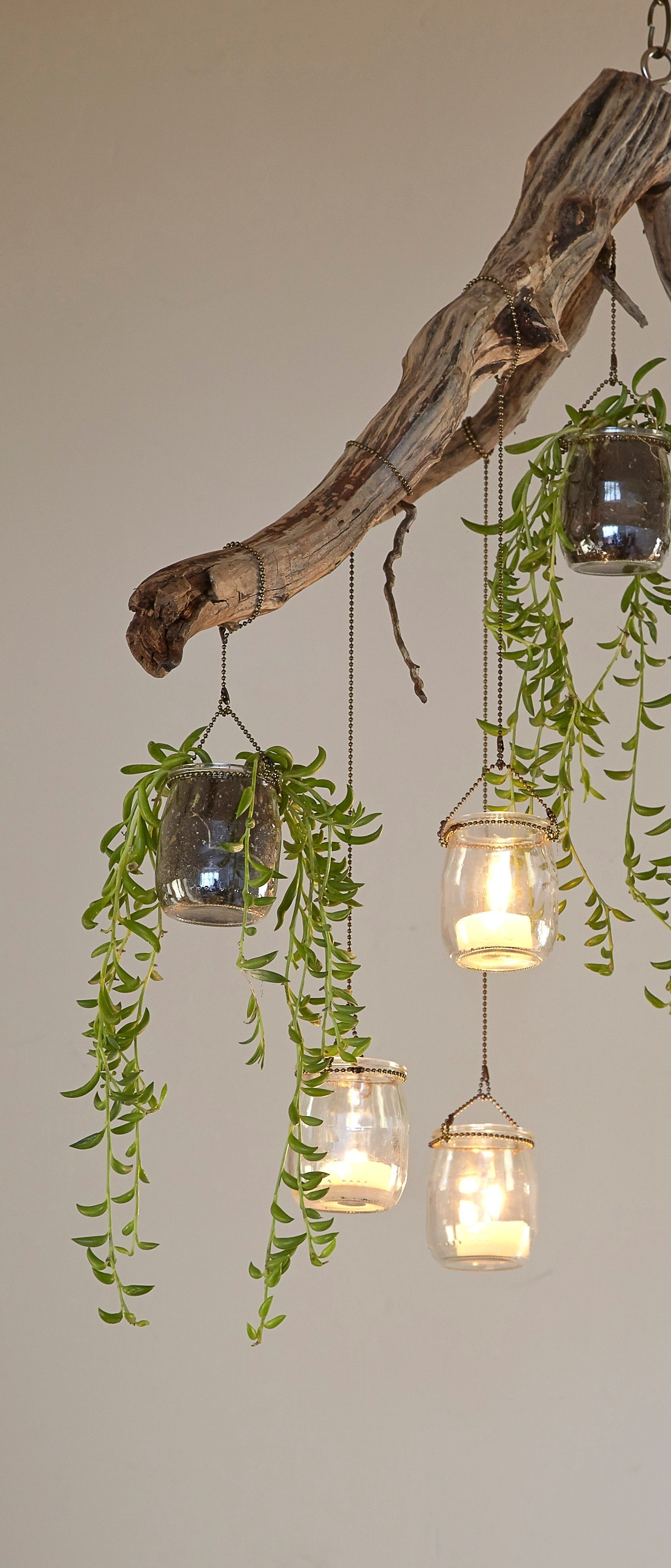 Planted Chandelier 183 Extract From Plant Craft By Caitlin