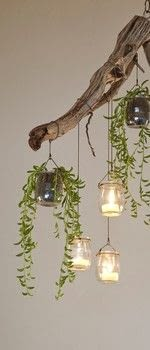 Found materials and small trailing succulents can be combined to make a charming chandelier. .  Free tutorial with pictures on how to plant a plant / a flower / a tree in under 120 minutes by gardening with eyebolt, branch, and chain. How To posted by Storey Publishing.  in the Decorating section Difficulty: 3/5. Cost: Cheap. Steps: 13
