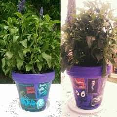 Haunted Mansion Painted Pot
