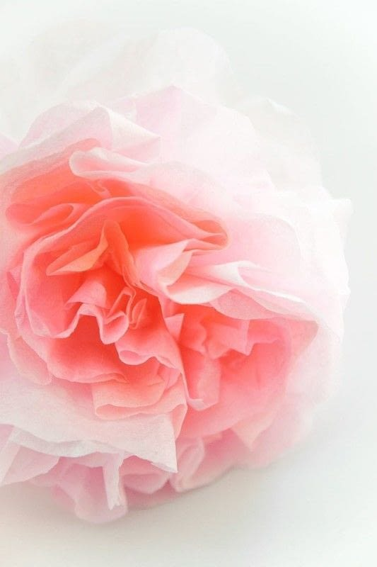 How To Make Paper Peonies How To Make A Paper Flower