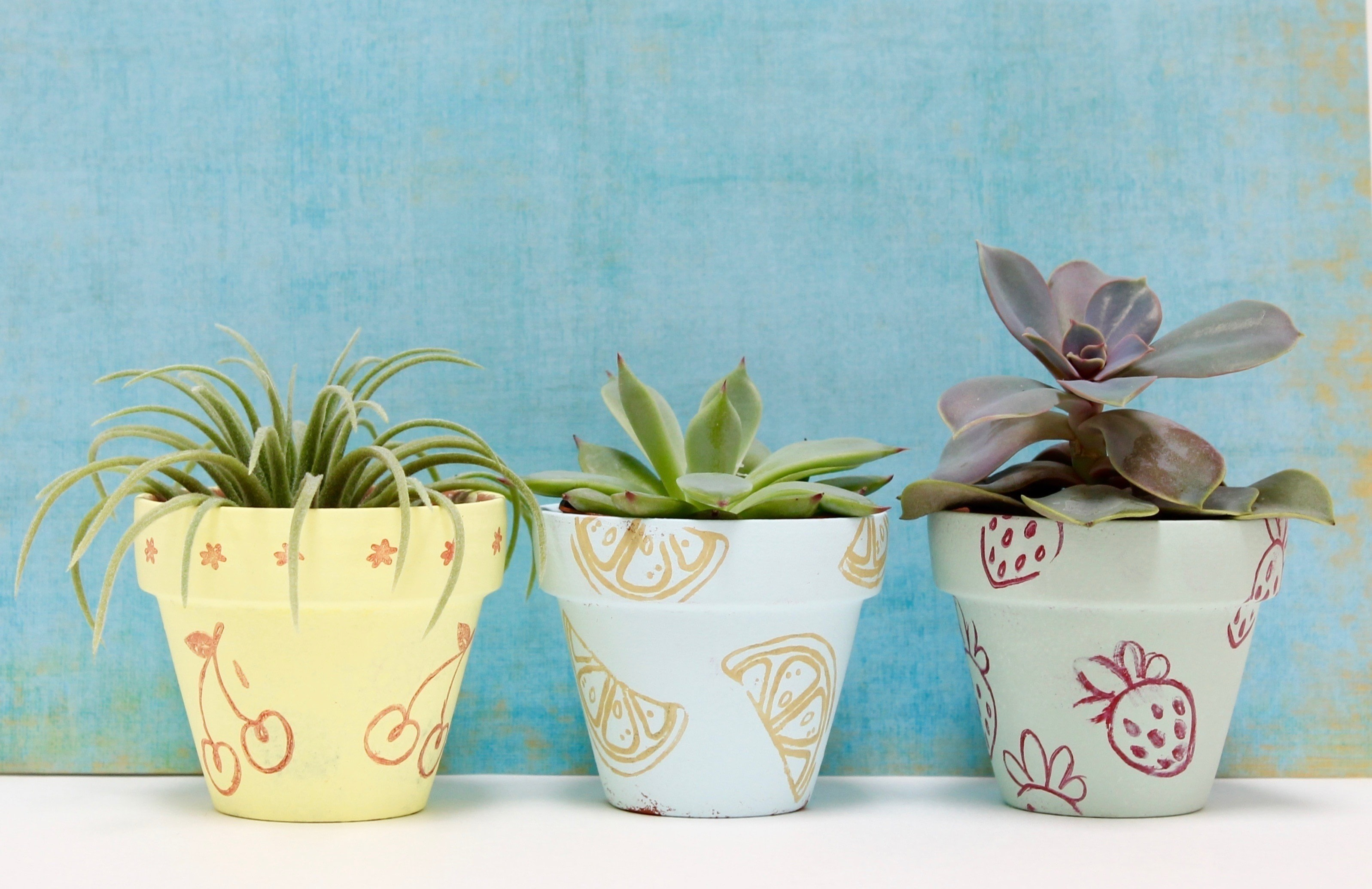Garden Art Painting Flower Pots