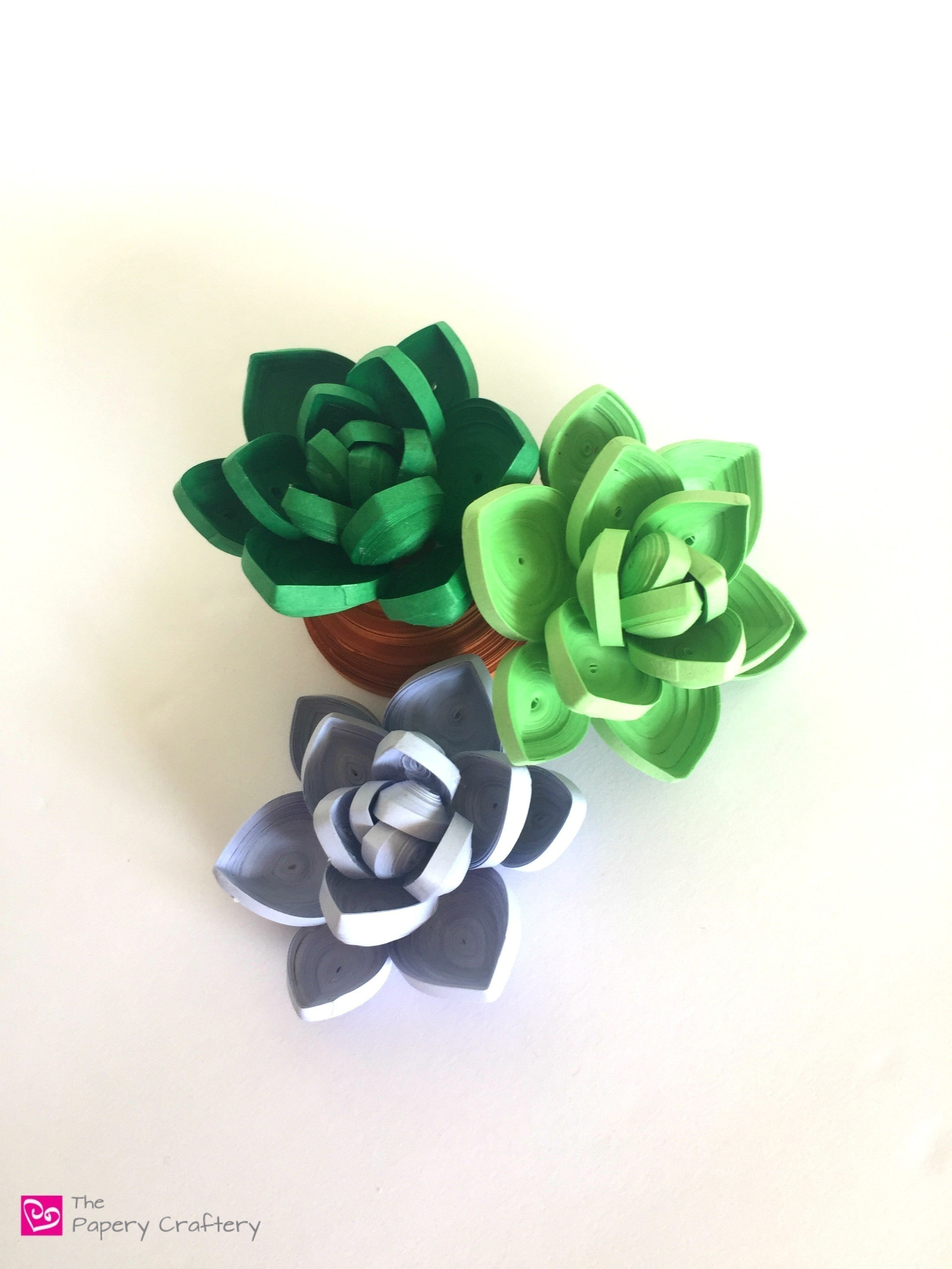 Quilling Paper Succulents How To Make A Paper Flower Papercraft