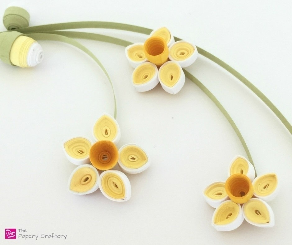 Quilling paper daffodils how to make a paper flower papercraft sweet springtime golden blooms and buds free tutorial with pictures on how to make a mightylinksfo