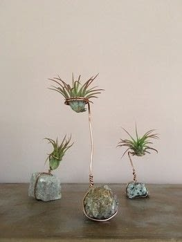 A cute, easy way to add plants .  Free tutorial with pictures on how to make a vase, pot or planter in under 10 minutes using air plants, copper wire, and wire cutters. Inspired by garden, plants, flowers & trees, and plants. How To posted by Jennifer P.  in the Other section Difficulty: Simple. Cost: Cheap. Steps: 7