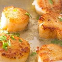 Easy Pan Seared Scallops