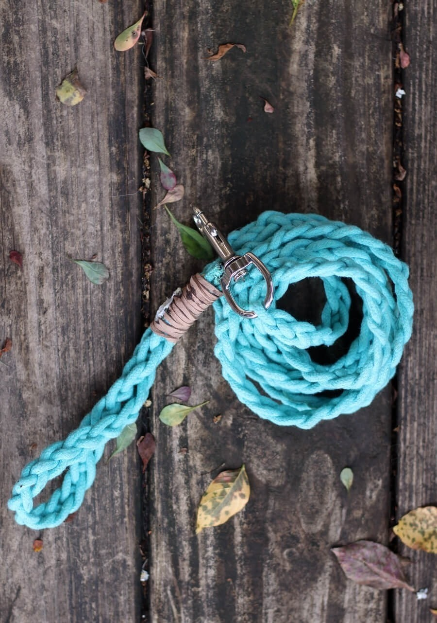 Dyed Braided Rope Dog Leash Diy 183 How To Make A Pet