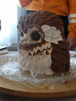 The cake that made me cry .  Bake a Black Forest Cake by cooking, baking, decorating food, molding, cake decorating, and  with fondant icing, fondant tools, and cake. Inspired by animals, owls, and cake. Creation posted by hannah g.  in the Recipes section Difficulty: 4/5. Cost: 3/5.