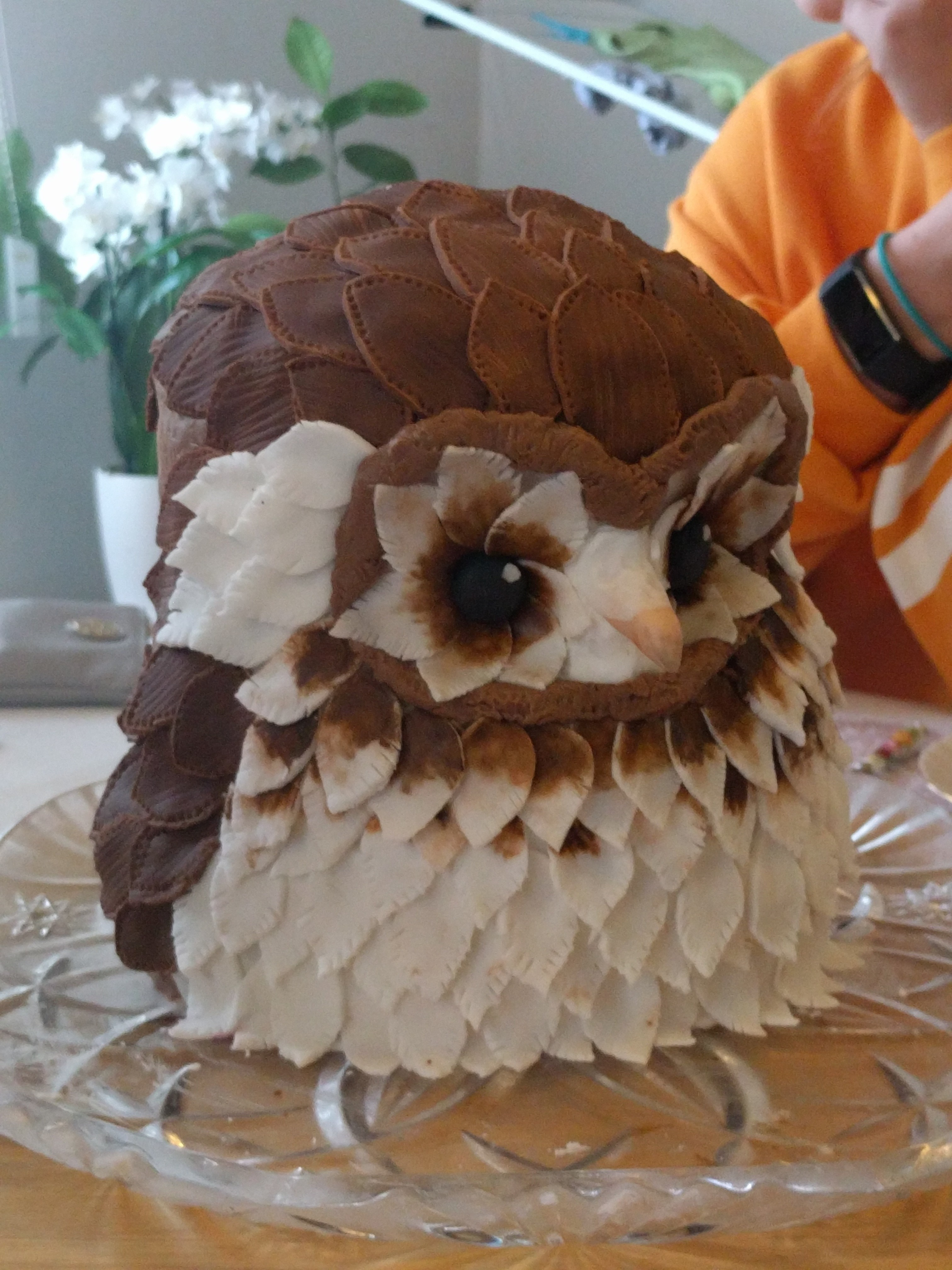 Owl Birthday Cake 183 A Black Forest Cake 183 Recipes On Cut