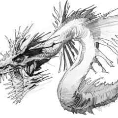 How To Draw Sea Dragon