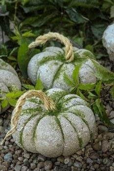 Weather proof Pumpkins! For indoor and outdoor use!  .  Free tutorial with pictures on how to make a piece of seasonal decor in under 20 minutes by decorating with rope, glue, and moss. Inspired by halloween and pumpkins. How To posted by Lily O.  in the Home + DIY section Difficulty: Simple. Cost: Cheap. Steps: 8