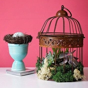 Create a succulent centerpiece! .  Free tutorial with pictures on how to make a vase, pot or planter in under 40 minutes by gardening with succulent plants, bowl, and bird cage. Inspired by birdcages. How To posted by Lori .  in the Other section Difficulty: Easy. Cost: Cheap. Steps: 5