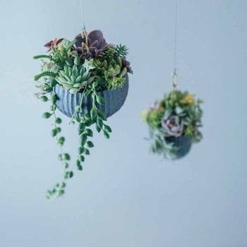 Stylish Succulents .  Free tutorial with pictures on how to make a hanging planter in under 35 minutes by decorating and gardening with pliers, container, and mesh. How To posted by Tuttle Publishing.  in the Home + DIY section Difficulty: Simple. Cost: Cheap. Steps: 8