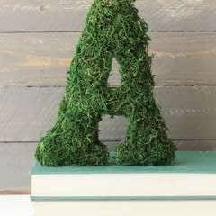 Sheet Moss Letters