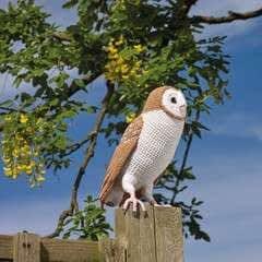 Crocheted Barn Owl