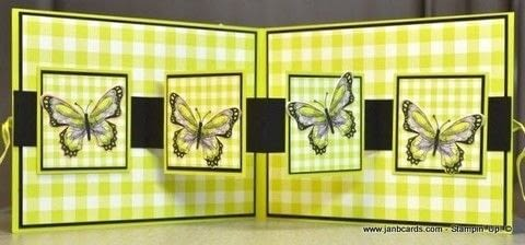 Create this fabulous and easy fun fold W card  .  Free tutorial with pictures on how to make a greetings card in under 60 minutes by papercrafting and cardmaking with card. How To posted by Jan B.  in the Other section Difficulty: Simple. Cost: 3/5. Steps: 1