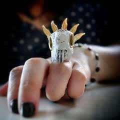 Stadium Love Taxidermy Ring