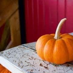 Fall Pumpkin & Mushroom Salad