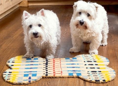 DIY for Dog Lovers .  Free tutorial with pictures on how to make a door mat in under 15 minutes by decorating with chalk, template, and doormat. Inspired by dogs. How To posted by GMC Group.  in the Decorating section Difficulty: Easy. Cost: Cheap. Steps: 3