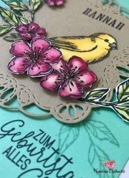 Birthday card in fun colors using products by Stampin' Up! .  Make a papercraft in under 40 minutes using cardstock, rubber stamp, and markers. Creation posted by Fräulein Erdbeerli - Miss Strawberry.  in the Papercraft section Difficulty: Simple. Cost: Cheap.