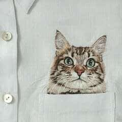 Tabby Pocket Cat