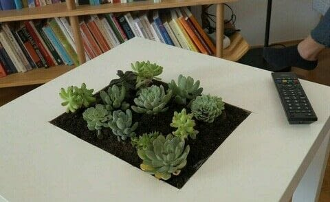 DIY Succulent Table: Step-By-Step Instructions to Do It Yourself .  Free tutorial with pictures on how to make a side table in under 60 minutes by gardening with clay, pens, and duct tape. How To posted by Janie Y.  in the Home + DIY section Difficulty: 3/5. Cost: 3/5. Steps: 6