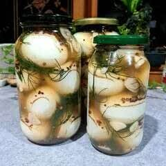 Dill Pickled Eggs