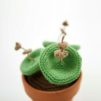 Stylish Succulents to Crochet .  Free tutorial with pictures on how to make a plant plushie in under 180 minutes by crocheting with crochet hook, cotton yarn, and soil. Inspired by cactus. How To posted by Search Press.  in the Yarncraft section Difficulty: 3/5. Cost: Cheap. Steps: 9