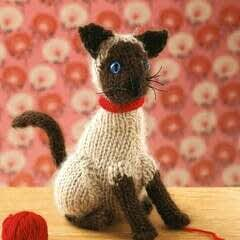 Knitted Sweet Siamese