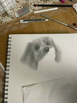 The technique I use to draw animal fur  .  Free tutorial with pictures on how to draw & paint a piece of animal art in 2 steps by creating and drawing with dotting tool, paper, and charcoal pencils. How To posted by Sophia M Sketches.  in the Art section Difficulty: 3/5. Cost: 3/5.