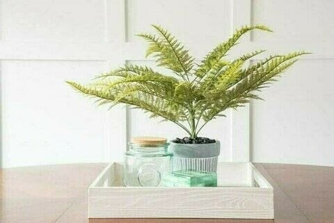 Create a Faux Greenery Arrangement in Your Home On A Budget .  Free tutorial with pictures on how to plant a plant / a flower / a tree in 13 steps by decorating with hot glue gun and glue sticks, faux fern greenery stem, and cement planter. How To posted by Christene A Holder.  in the Home + DIY section Difficulty: Simple. Cost: Cheap.