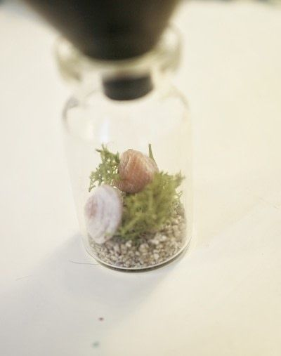 How to make a vial. Seahorse Terrarium Necklace - Step 10