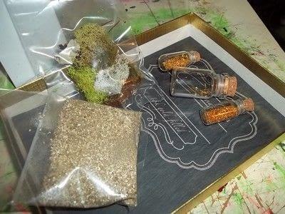 How to make a terrarium. Tiny Plant Terrariums  - Step 2