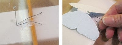 How to make a taxidermy mount. Faux Butterfly Taxidermy - Step 2