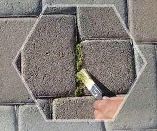 How to make a garden decoration. Moss Paint - Step 2