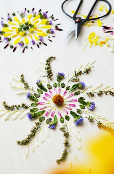 How to make a piece of pressed flower art. Nature Mandalas  - Step 4