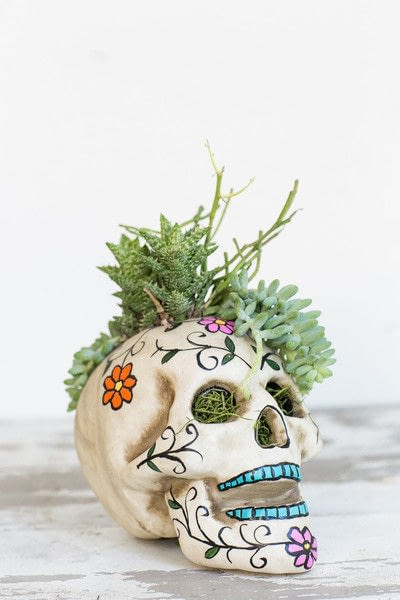 How to make a vase, pot or planter. Easy Halloween Skull Centerpiece - Step 5