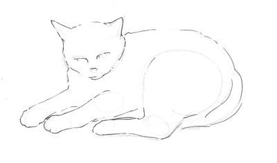 How to draw & paint a piece of animal art. Draw A Cat In Fifteen Minutes - Step 3