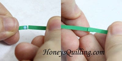 How to fold a piece of quilled art. Paper Quilled 3 D Turtle - Step 1