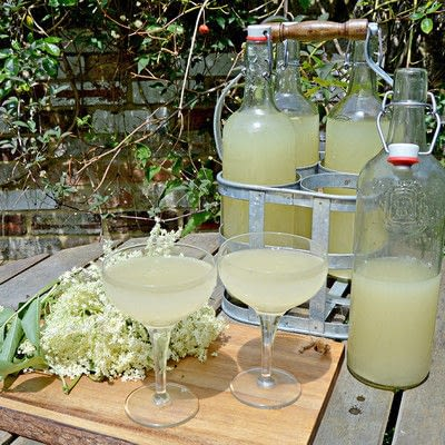 How to mix an alcohol. Homemade Elderflower Champagne - Step 4