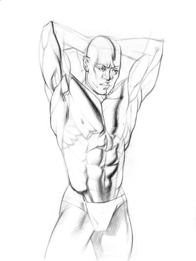 How to make a drawing. How To Draw And Shade The Human Torso - Step 7