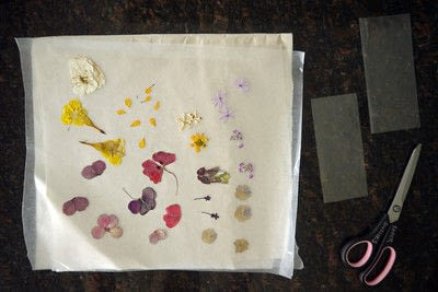 How to make a bookmark. Diy Pressed Flower Laminated Bookmarks - Step 3